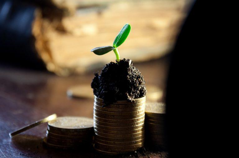 Как найти стабильный доход и разбогатеть